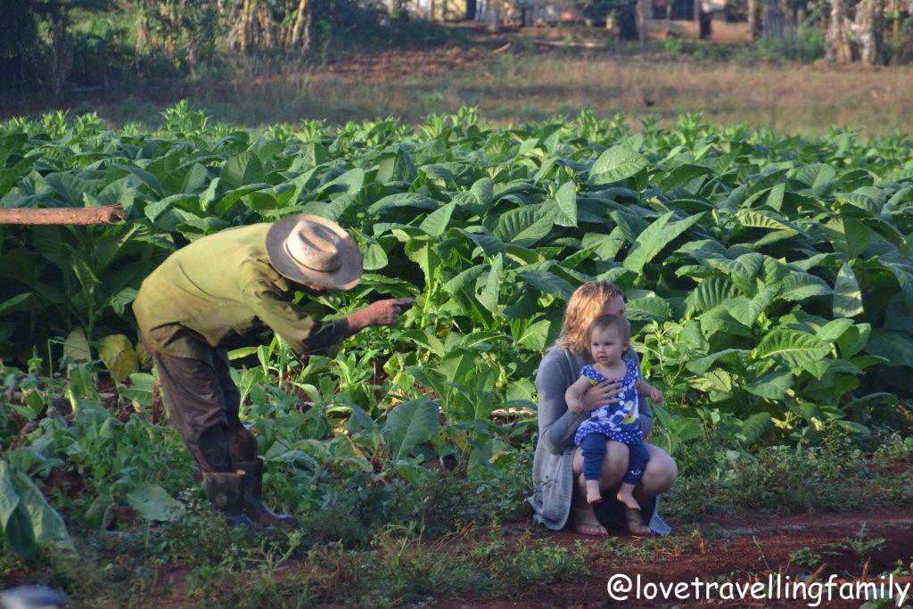 Reisen zu Traumzielen mit Kind: Kuba