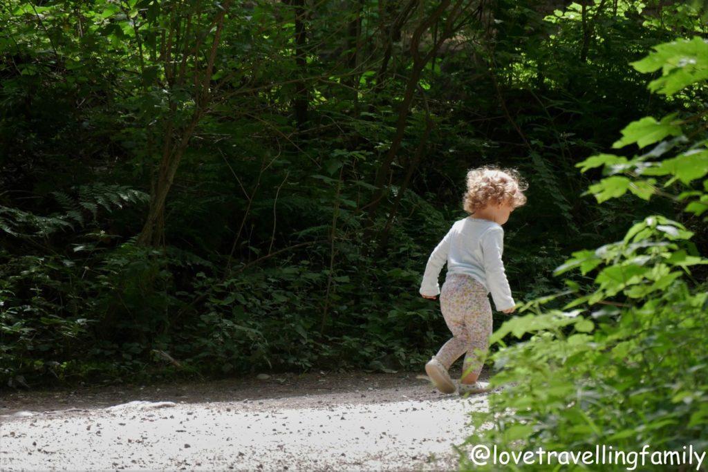 Wildpark Oberreith - Natur