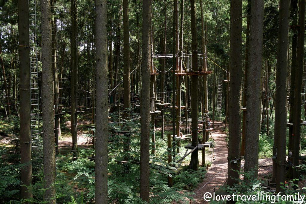 Wildpark Oberreith - Waldseilgarten